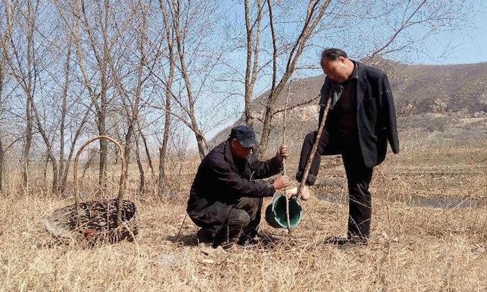 На фото: незрячий человек и человек, не имеющий рук, вместе сажают деревья
